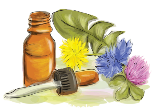 bahove kapi - bach flower remedies