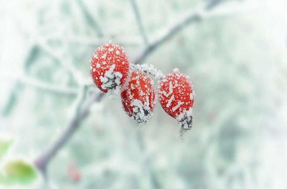 zimska-depresija